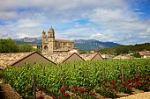 СЕВЕРНА ИСПАНИЯ – Пътят Камино де Сантяго – oт страната на баските до Галисия! Пътуване в малка група с водач на български език! Има жена за комбинация!