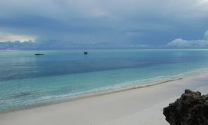 Екскурзия Сафари в ТАНЗАНИЯ и ПОЧИВКА НА ОСТРОВ ЗАНЗИБАР - докосване до дивата природа и красивите бели плажове на Индийския океан - индивидуални пакетни предложения през цялата 2021 г. - 10 дни/ 8 нощувки/ 8 закуски/ 8 обяди/ 8 вечери